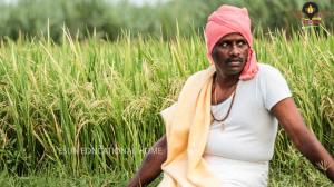 founder-agriculture-4